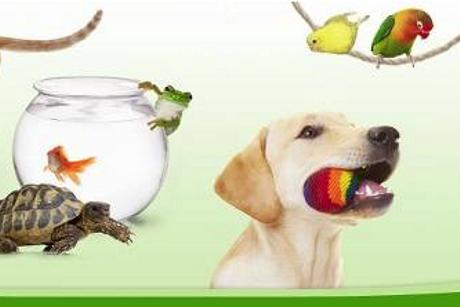 ZooPlus. Sklep zoologiczny w Internecie